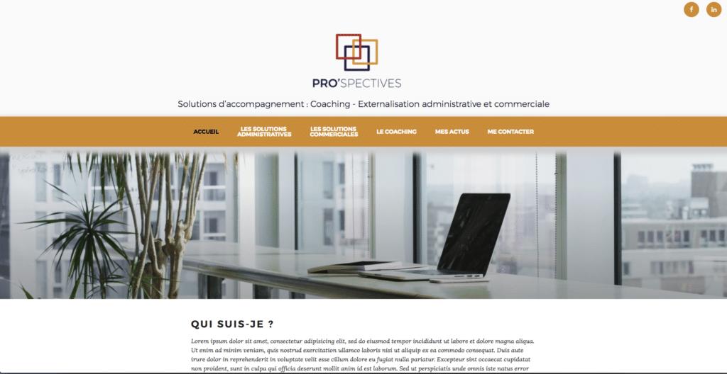 Site web Pro'Spectives